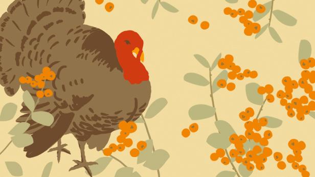 History of Thanksgiving #Hallmark #HallmarkIdeas
