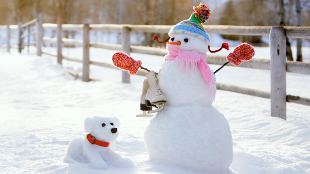 How to build a snowman and snowdog
