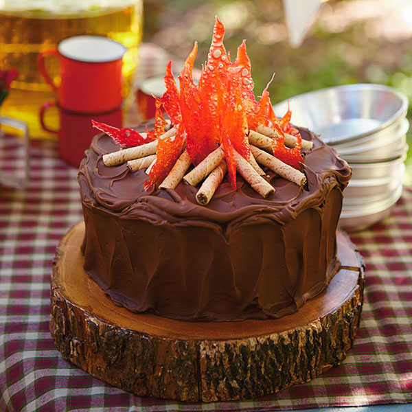 Campfire Cake Recipe Hallmark Ideas amp Inspiration