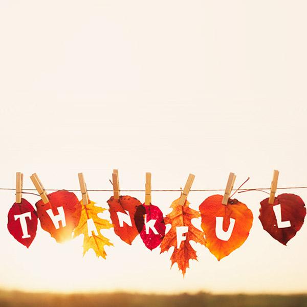 Thanksgiving Blessings | Hallmark