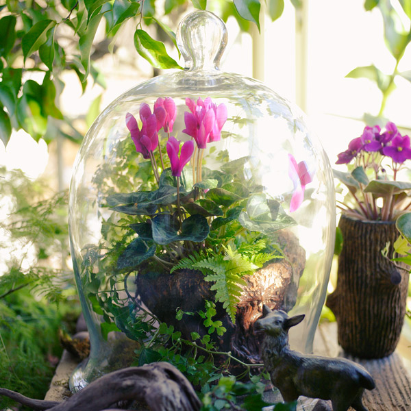Jump-start spring with a DIY terrarium
