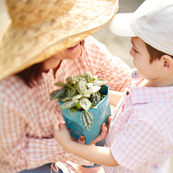 Mom and son holding a plant