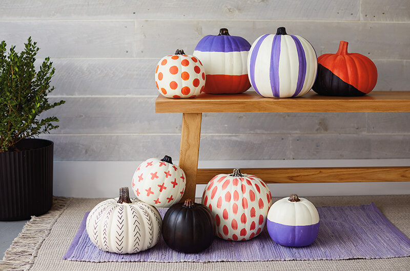 Painted pumpkins on a bench and on the floor