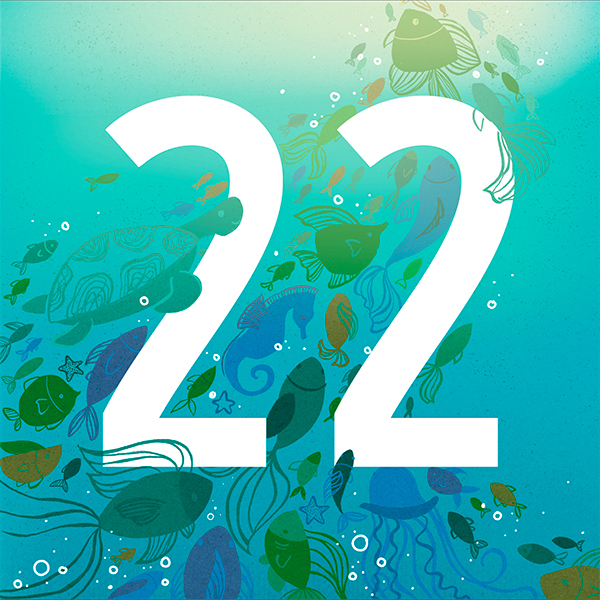 Number 22 with symbols for water[Anniversary Gifts by Year]